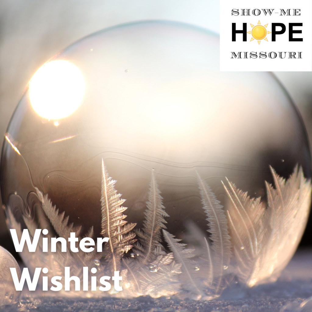 Glass ball reminiscent of a snow globe with what looks like frost in the bottom, and a reflection of the sun in the top left corner. Words read: Show Me Hope Missouri - Winter Wishlist